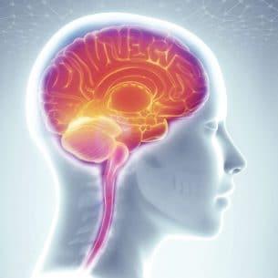 L'évaluation neuropsychologique paris